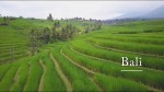 Bali Team NanoPirate